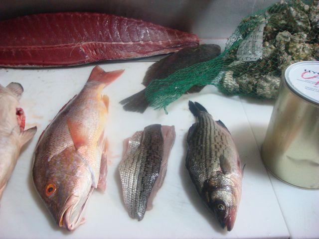 Fish o'rama
