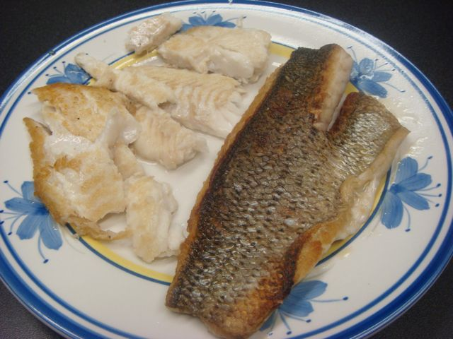 Flounder and striped bass