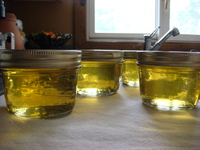Sauternes_and_sage_jelly_2